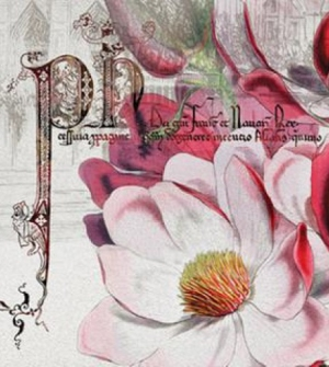 Χαρτοπετσέτα ροζ λουλούδια 20τεμ.